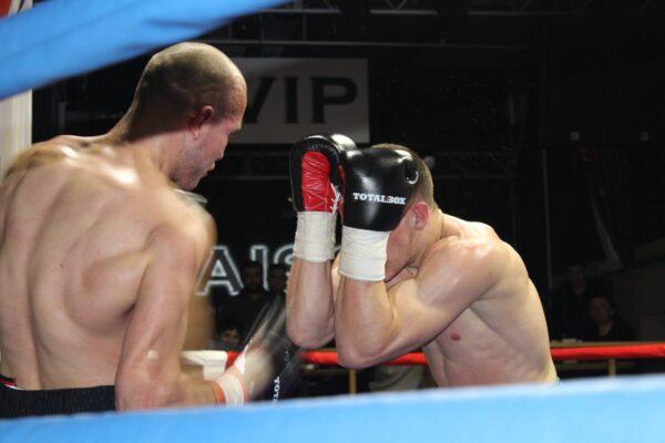 боксерские перчатки TOTALBOX