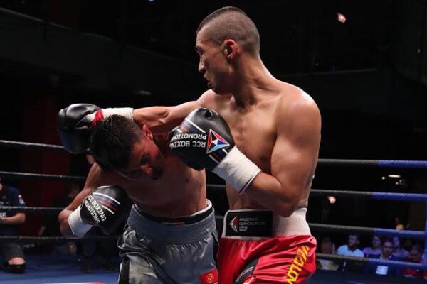 боксерские перчтатки с логотипом RCC Boxing Promotions