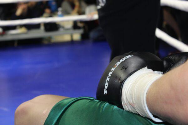Профессиональные боксерские перчатки TOTALBOX