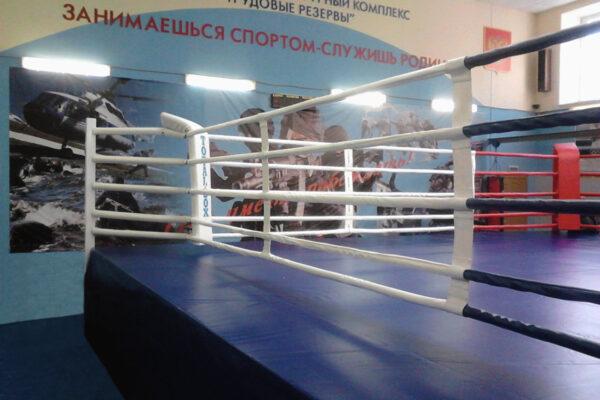 ГБУ СШОР «Трудовые резервы» (Москва)